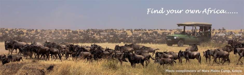 Mara Plains Camp Kenya 2