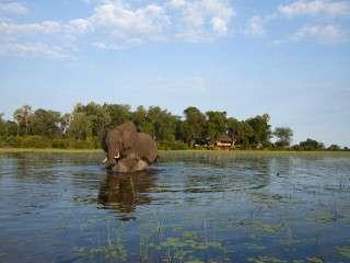Jacana Camp Botswana