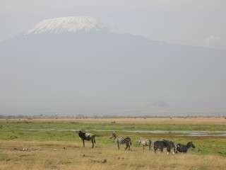 Kilimanjaro Amboseli