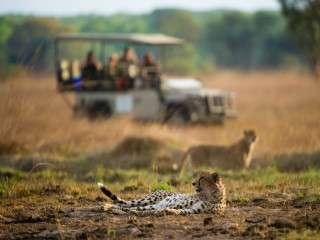 cheetah Shumba Camp