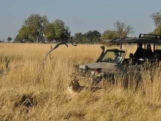 Shinde Camp Okavango